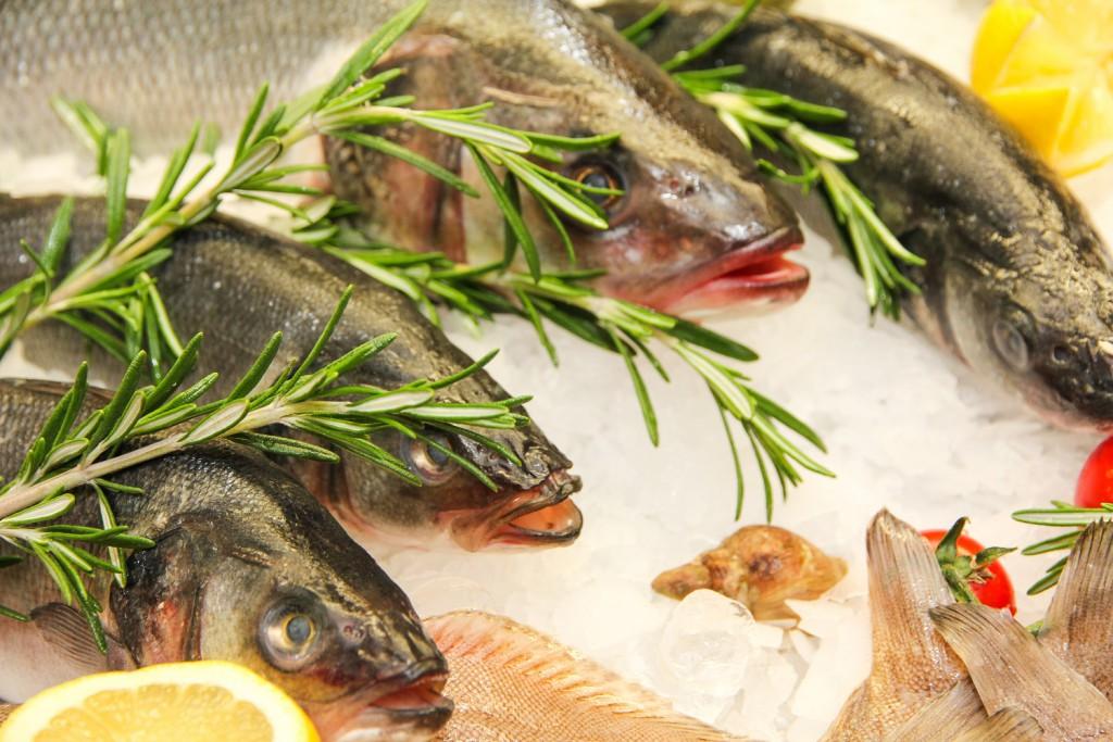 Frische Fisch